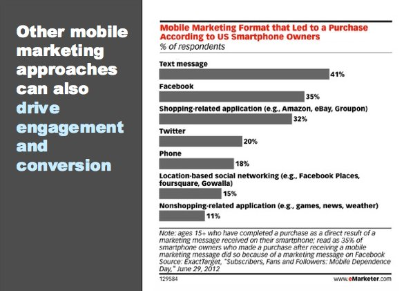 eMarketer Webinar Survey on SMS Marketing